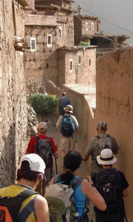 Viure berber