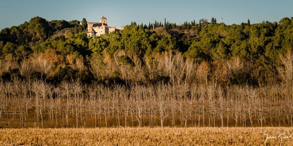 Castell  d'Arenys. Comte de Solterra