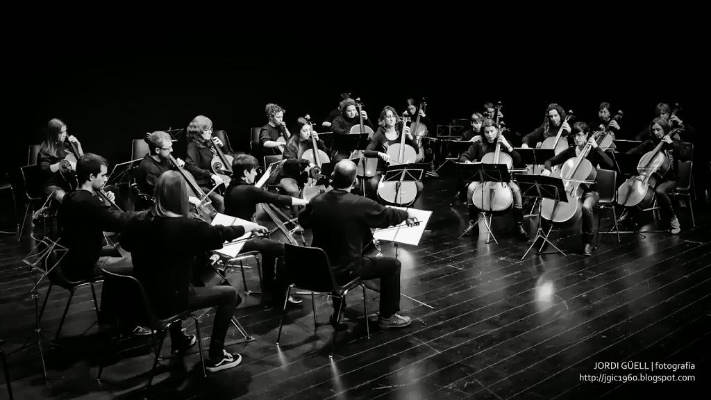Orquestra de violoncels