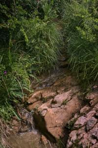 L'origen de l'aigua