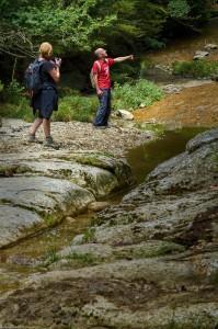 Discovering Fluvià