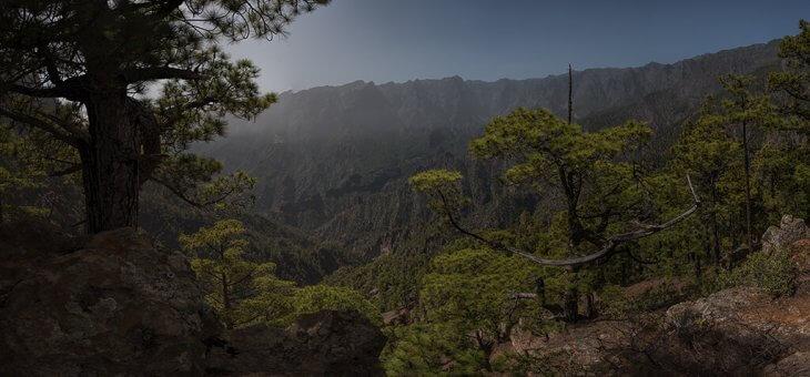 La Palma, isla bonita